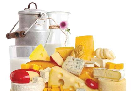 Palco proizvodi i rešenja za mlečnu industriju